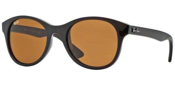 Sluneční brýle Ray-Ban® model 4203, barva obruby hnědá lesk, čočka hnědá gradál, kód barevné varianty 714.
