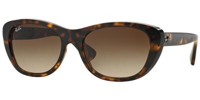 Sluneční brýle Ray-Ban® model 4227, barva obruby hnědá lesk, čočka hnědá gradál, kód barevné varianty 71013.