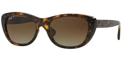Sluneční brýle Ray-Ban® model 4227, barva obruby hnědá lesk, čočka hnědá gradál polarizovaná, kód barevné varianty 710T5.