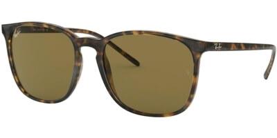 Sluneční brýle Ray-Ban® model 4387, barva obruby hnědá lesk, čočka hnědá, kód barevné varianty 71073.